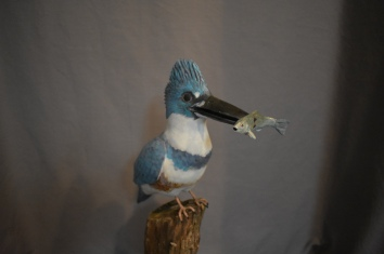 Life sized King Fisher, 400.00$